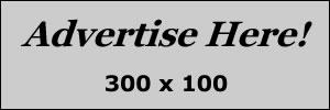 Banner Ad 300x100